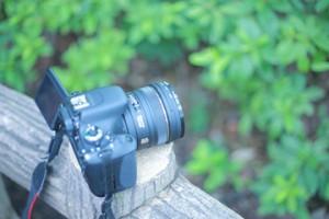 写真集めもまた楽しい作業 ― はじめての自分史 作り方ガイド(4)