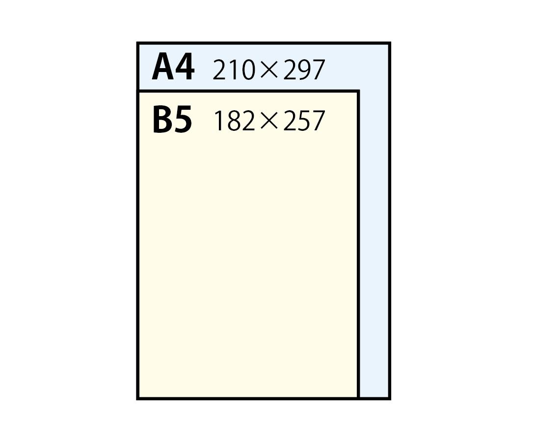 【冊子印刷】A4とB5はどう使い分ける?サイズや成り立ち