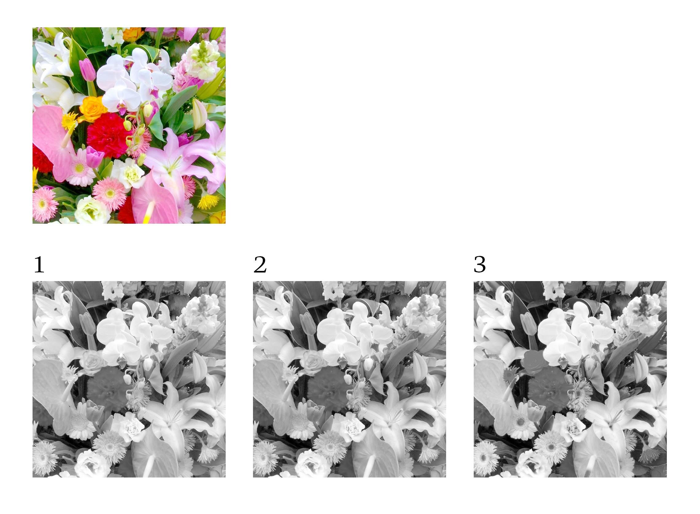 カラー写真をモノクロ変換する時のコツ